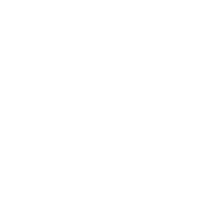 Carbon  Robot Fork